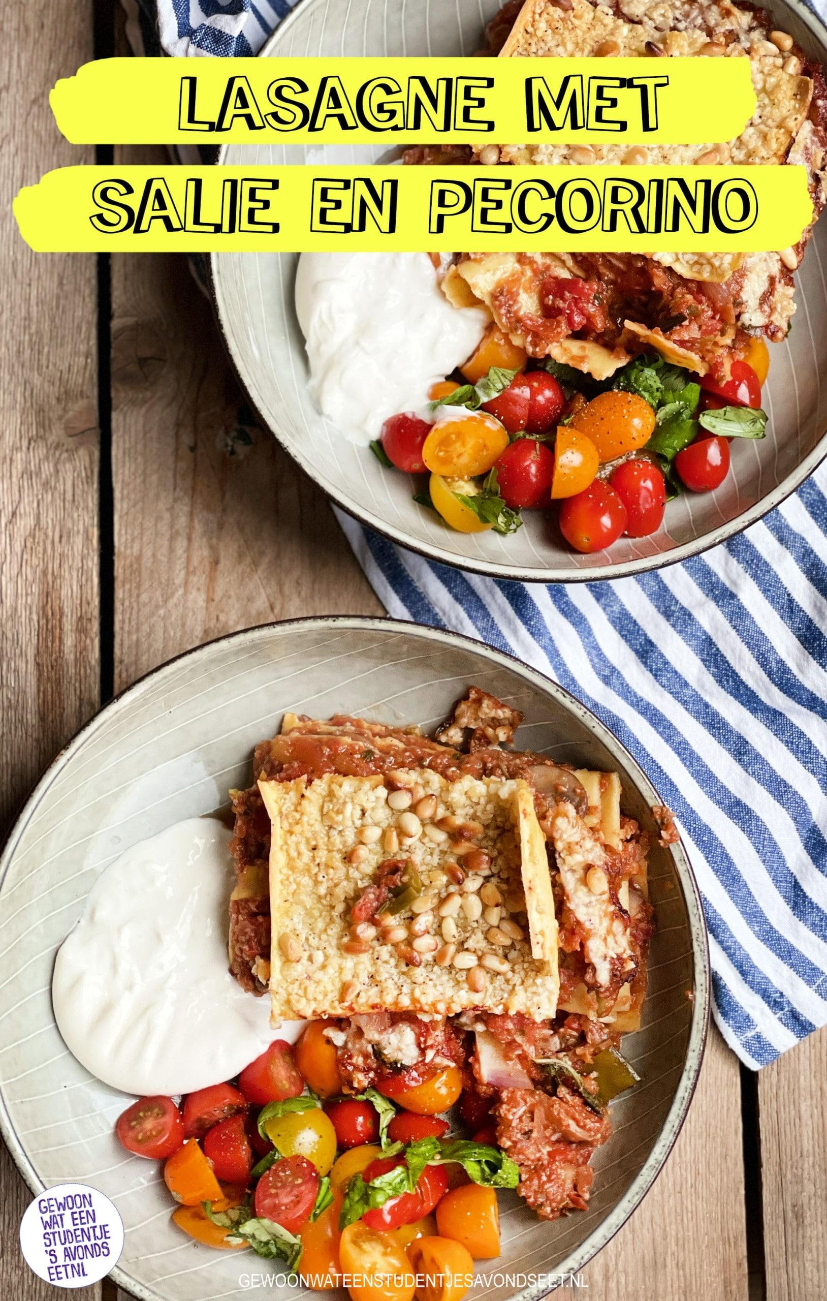 vegetarische lasagne pinterest