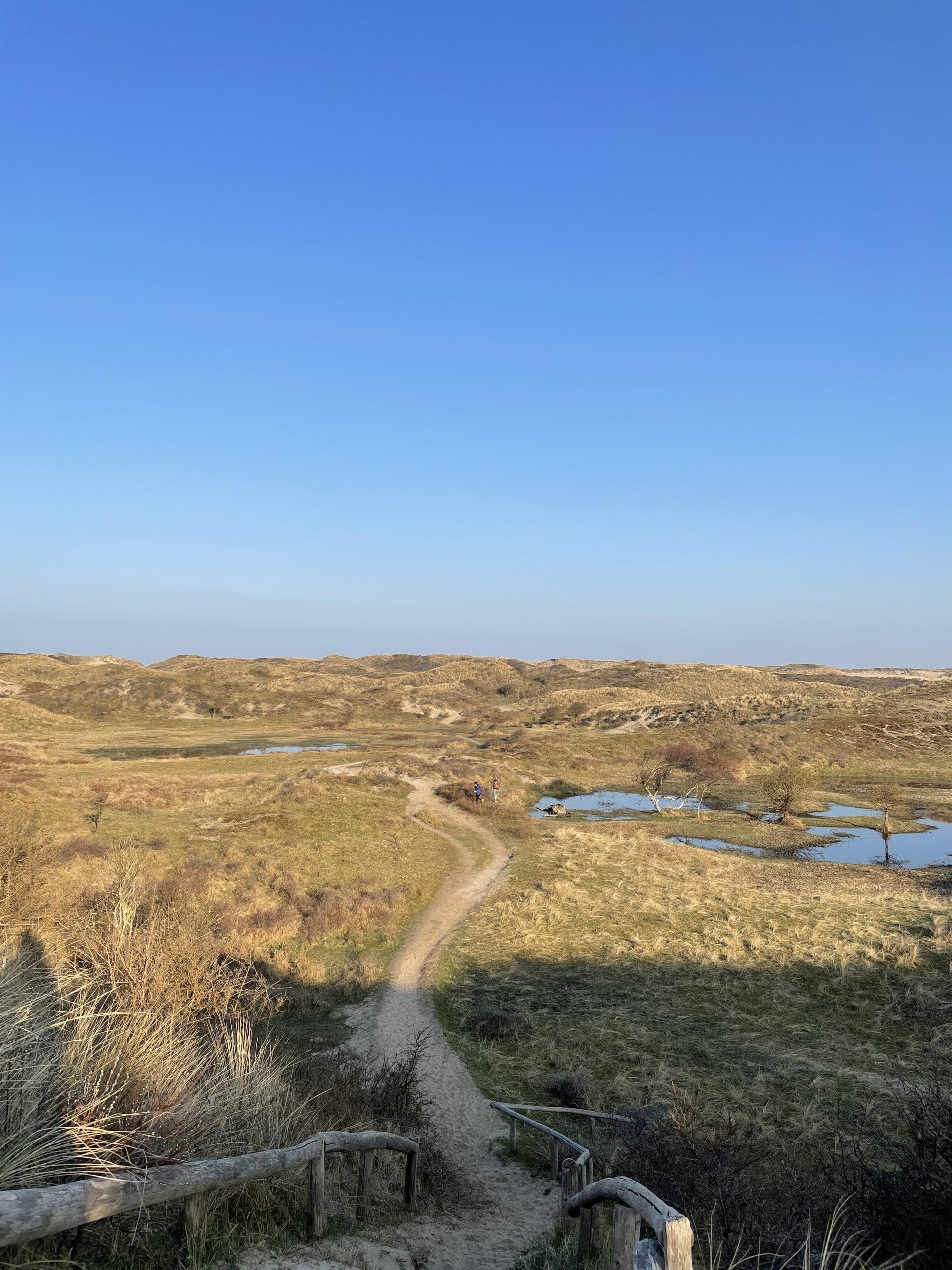 Wandelroutes Haarlem